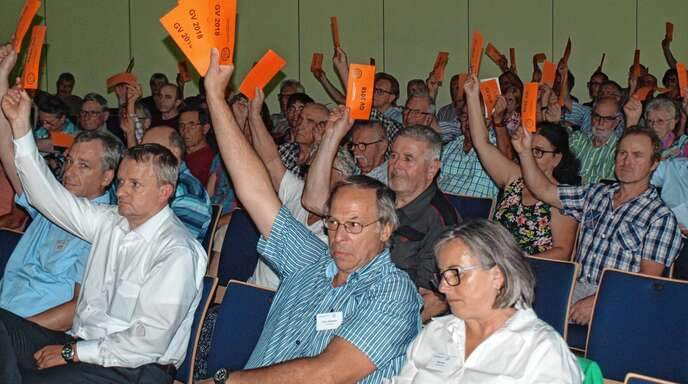 Gute Zahlen wurden den Mitglieder der Bürger-Energie-Genossenschaft E-Werk Mittelbaden in der Versammlung vorgelegt.