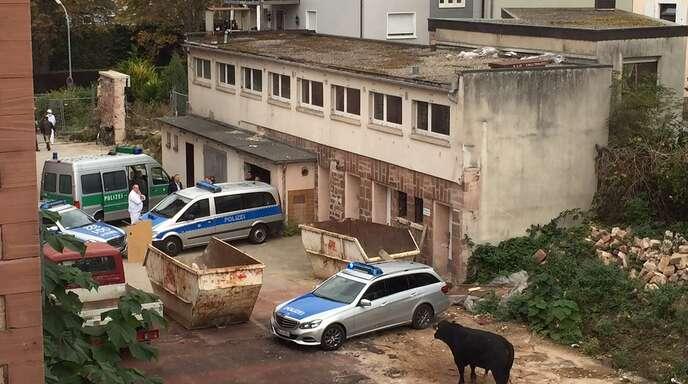 Der entlaufene Stier konnte nach Angaben der Polizei am alten Gefängnis eingekesselt werden.