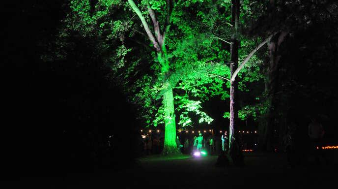 Tausende Kerzen werden im Stadtpark leuchten.