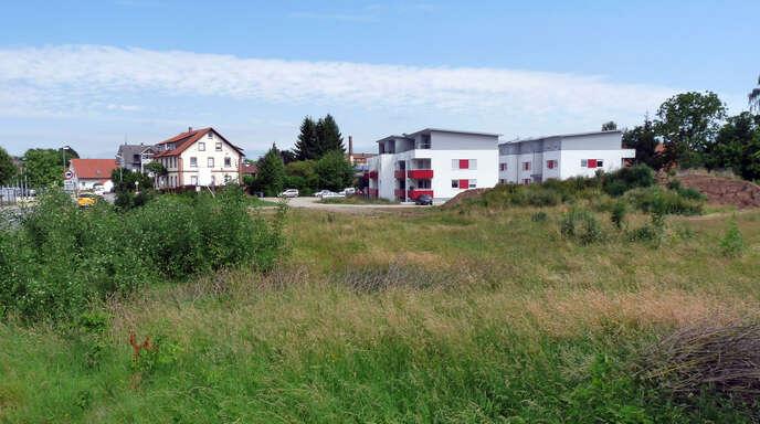Im Anschluss an die beiden Mehrfamilienhäuser (rechts am Bildrand) soll ein neues Wohngebiet entstehen. Der Ortschaftsrat Kork will jedoch keine zu stark verdichtete Bebauung zulassen.