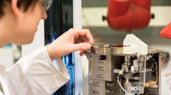 Forschung im Institut für Chemie und Biologie des Meeres der Universität Oldenburg.