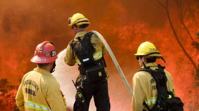 Die Brände in Kalifornien haben bereits Hunderte Quadratkilometer Wald verkohlt, Tausende Häuser zerstört - und sind noch lange nicht eingedämmt.