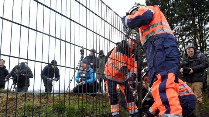 Nachrichten Padborg Kopenhagen Harrislee Angst Vor Der Schweinepest