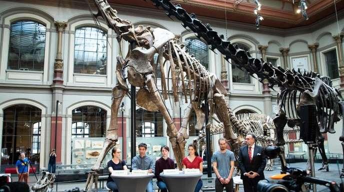 Der Ort, das Berliner Naturkundemuseum, wurde bewusst gewählt.
