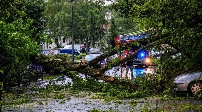 Die heftigen Sommergewitter mit Starkregen, Überflutungen und Verkehrsbehinderungen hinterlassen ihre Spuren.
