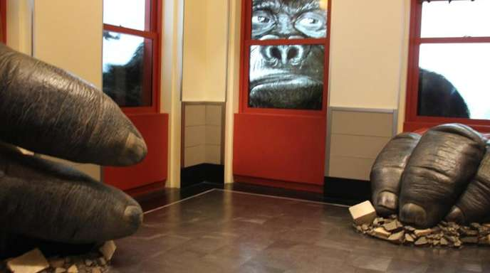 Eine neue Attraktion:King Kong.