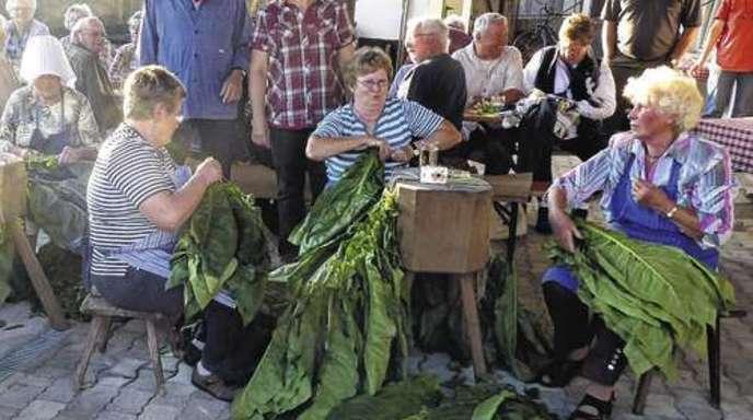 Foto: Dieter Fink - Alex Kopf und die Vorsitzende des Landfrauenvereins, Gerda Roth, und vor ihnen Tabakanstecherinnen.