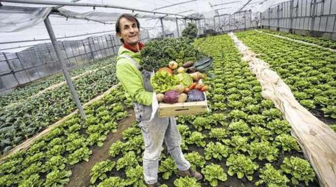 Foto: Ulrich Marx - Bio-Händler Matthias Zipf aus Mahlberg: »Die Leute sollen Spaß haben, das Obst und Gemüse zu erhalten.«