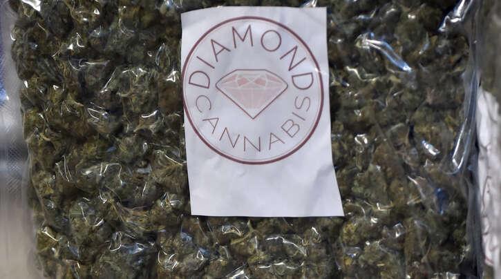 Fast sieben Kilogramm Marihuana hat die Polizei im Zuge der Ermittlungen gegen eine mutmaßliche Drogenbande beschlagnahmt (Symbolfoto).